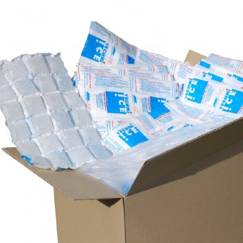 428 (1 Carton) Techni Ice STD 2 PLY Disposable/ Minimum Reuse Dry Ice packs -Plain White